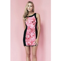 KEEPSAKE - Fool In Love Print Dress (KX121125D/PRT - Rose Print/Black size S)